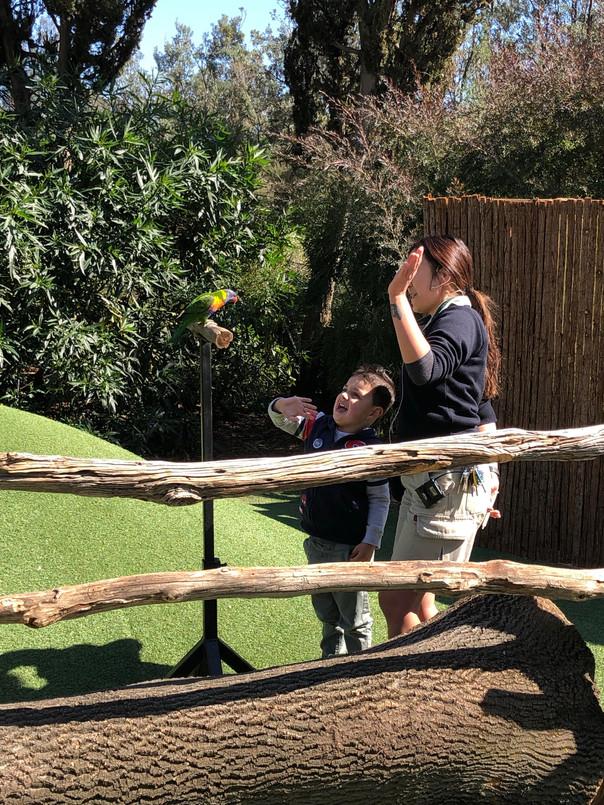 Keeper Care Hub - Melbourne Zoo
