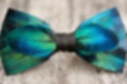 Blake Ashland, Bow Tie, Bow Ties, Greensboro, Preppy, Gordon's, Tie, Colors, Gentleman, Menswear