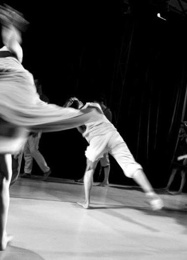 Sin Proyeccion Artistica 2012
