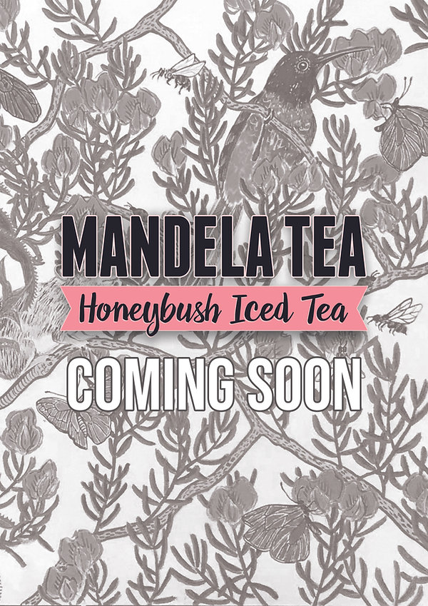 Honeybush Iced Tea - Arriving Soon