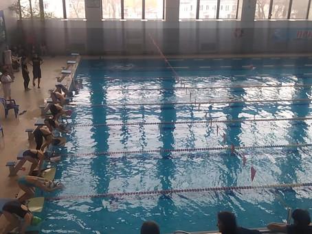 Чемпионат города Ярославля по плаванию в ластах
