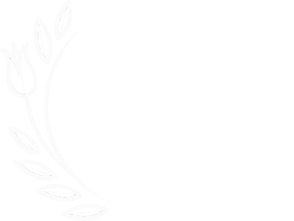 white blossom branch.png