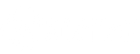2019 Auction logo White.png