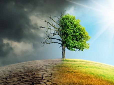 MUDANÇAS CLIMÁTICAS: Impactos sociais, econômicos e ambientais no semiárido brasileiro