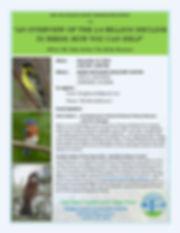 bird flyer.jpg