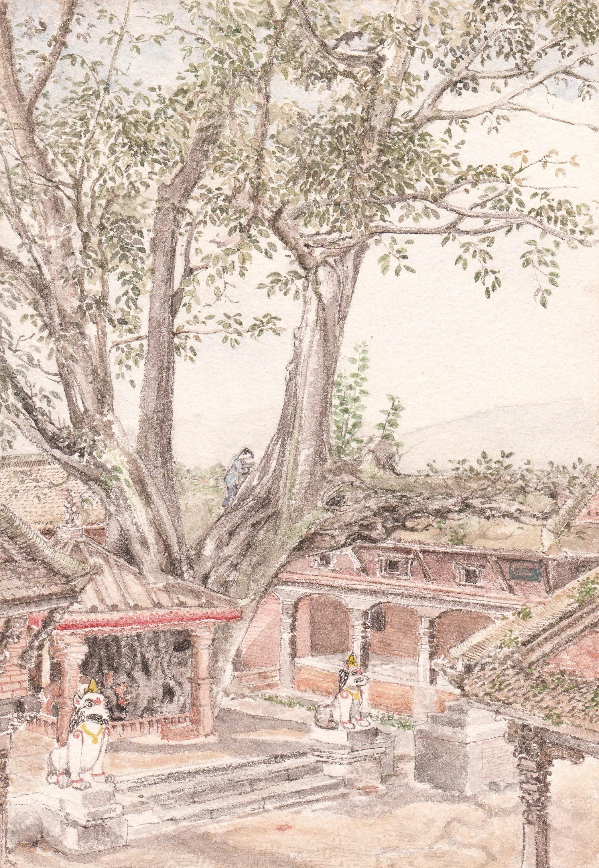 Bhaktapur cbr