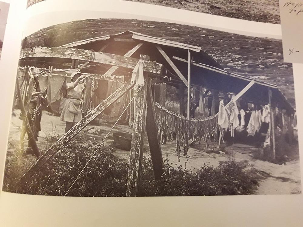המכבסה הראשונה בקיבוץ הזורע 1941