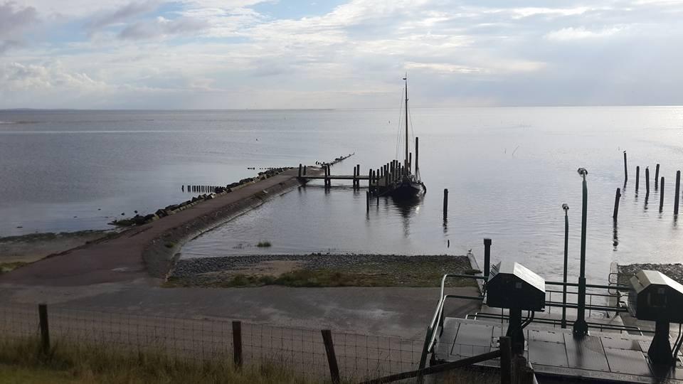מפרץ באי TEXEL הולנד