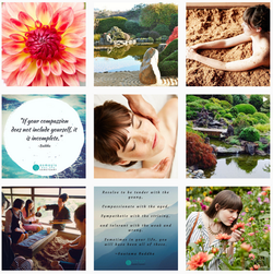 Osmosis Day Spa Instagram