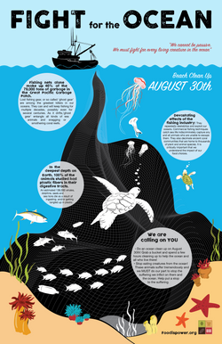 Fight For The Ocean Infographic