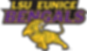 00037A-Athletic-web-330-192.png