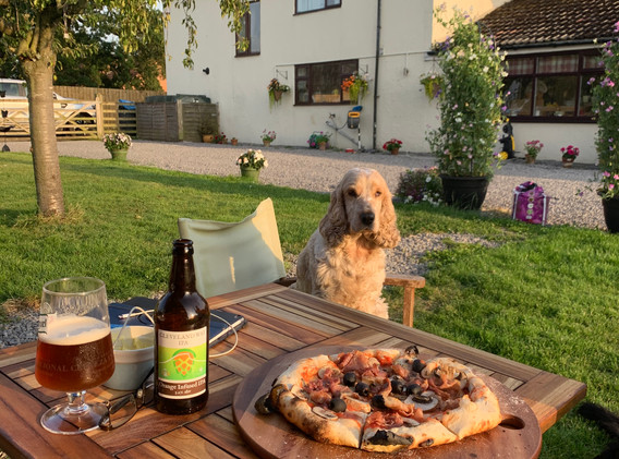 greedy teds wood fired pizzas
