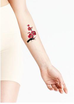 arm 3