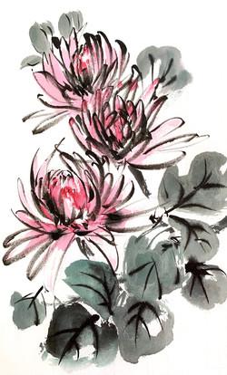 Chrysantemums