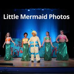 Little Mermaid Gate.png