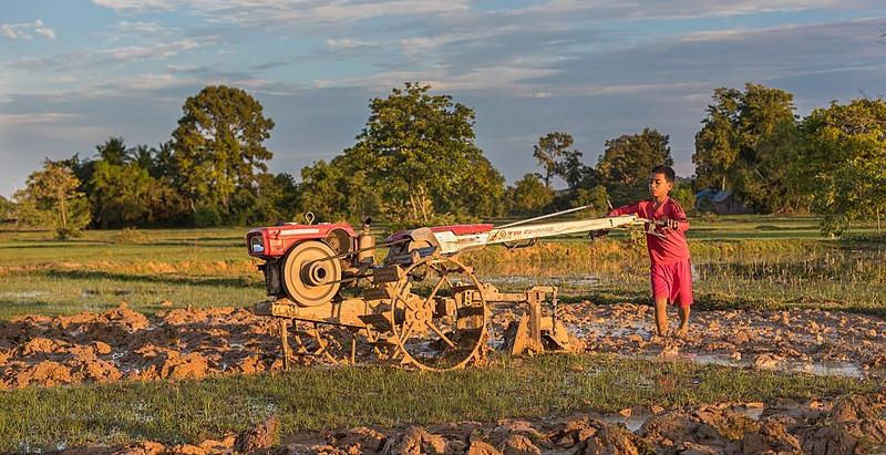 Pesticides au Laos, un danger permanent