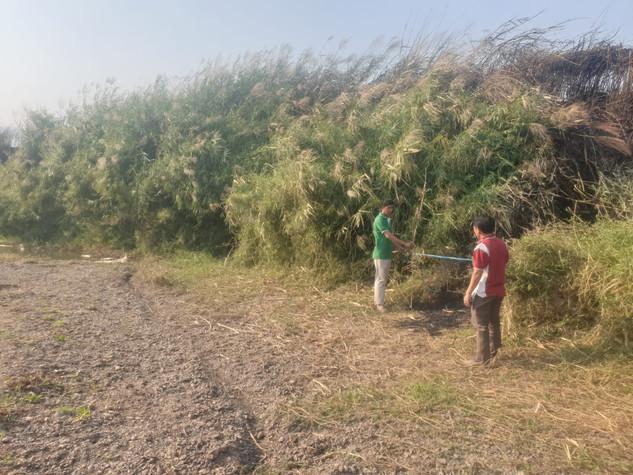 Le réseau traverse des zones boisées qu'il va bien falloir franchir.