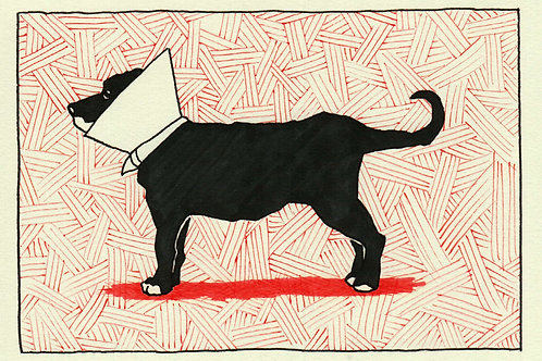 """Cone Of Shame (Red)"" Giclee by Dave Ferguson"