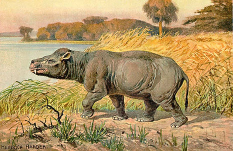 Once, in the paleocene era /How Global Warming Is Shrinking the Earth's Animals Scientific American