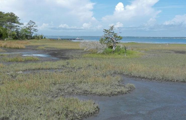 Acidification /Coastal Ocean Warming Adds to CO2 Burden  EOS Earth & Space Science News
