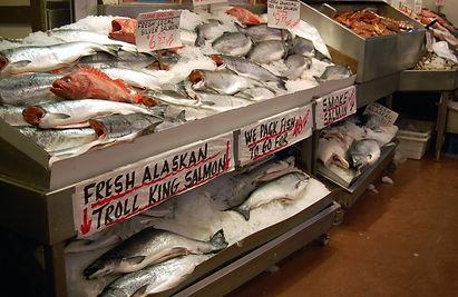 Piscine panic /Warmer waters cut Alaska's prized salmon harvest  Reuters