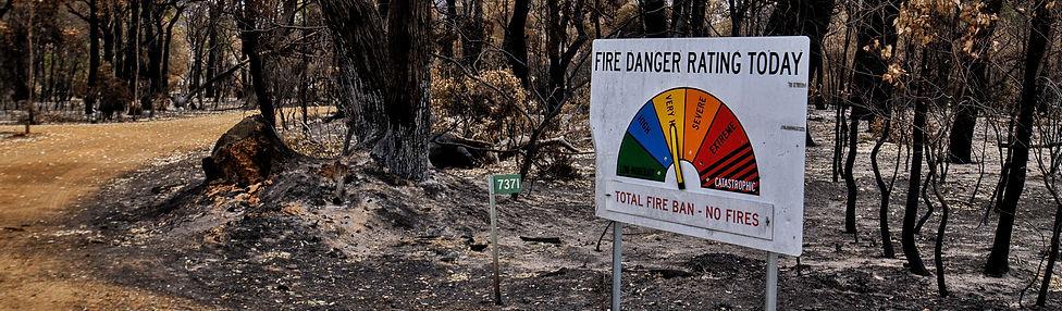 bushfire-4772240_1920.jpg