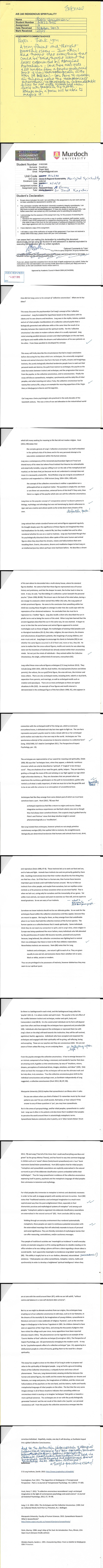 RGoodman 2013 Essay on Indigenous Spirit