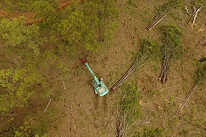Australia deforestation /Land-clearing wipes out $1bn taxpayer-funded emissions gains The Guardian