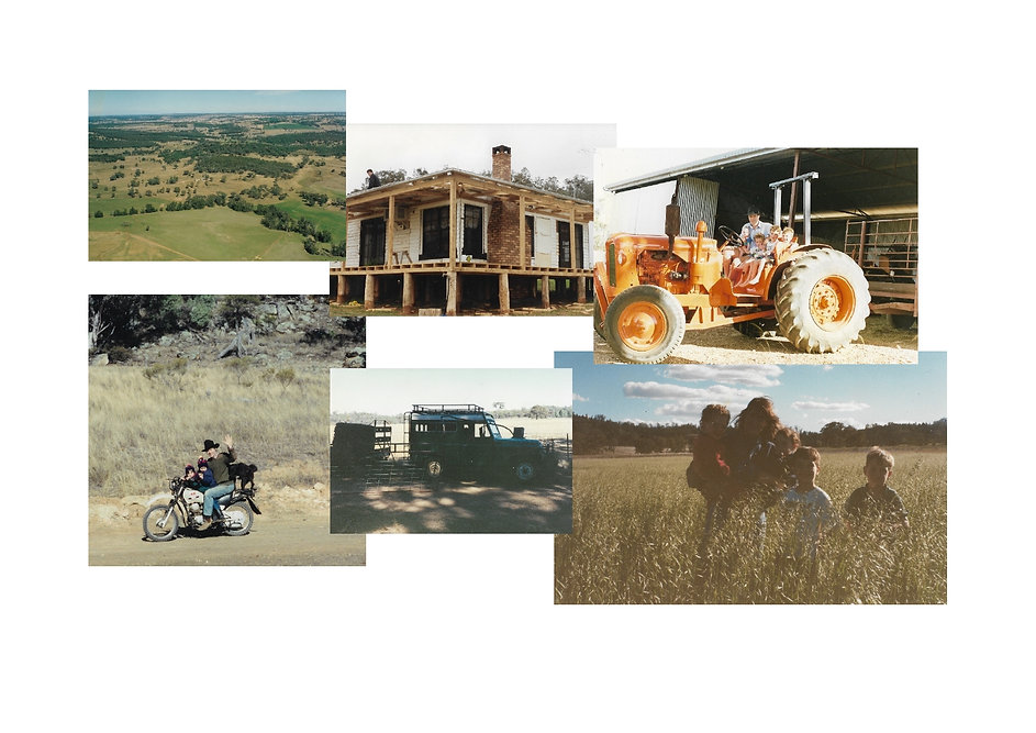 collage of Coona farming-page0001.jpg