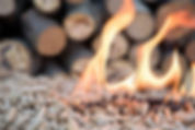 Carbon in a pellet/The dirty little secret behind 'clean energy' wood pellets  The Guardian