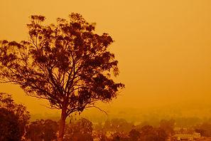 Bushfires/Climate change impacts Victoria [Australia]emergency fight  9 News