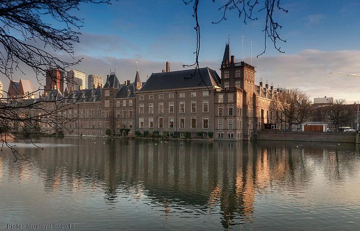 100% carbon neutral electricity /The Netherlands contemplates the world's toughest climate law Vox