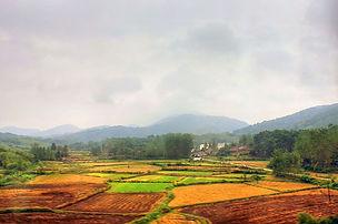 China /Straw incorporation increases... soil organic carbon sequestration Biogeosciences