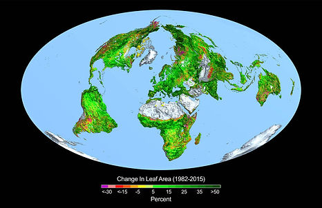 CO2 fertilisation /Plant Regrowth as a Driver of Recent... CO2Uptake  Geophysical Research Letters
