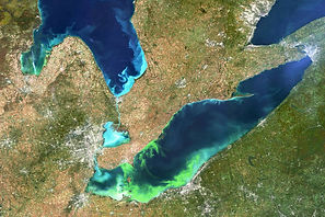 Toxic Algae Blooms/  ...Occurring More Often, May Be Caught in... Feedback Loop  Inside Climate News