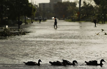 """""""Sunny day flooding"""" /Meet America's new climate normal: towns that flood when it isn't raining The Guardian"""