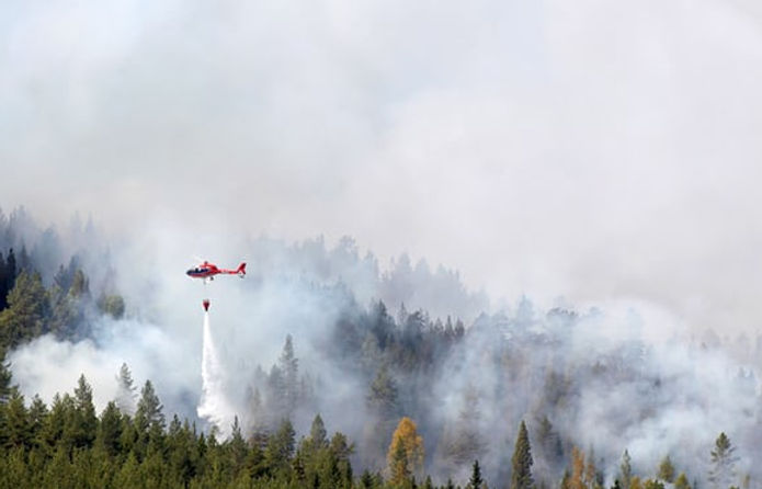 Weird summer /Wildfires rage in Arctic Circle as Sweden calls for help The Guardian