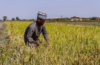 Land Stress /Land Conflict Has Long Been a Problem in Nigeria... Climate Change Is Making It Worse Time