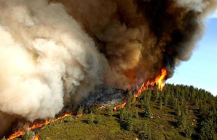 New wildfire studies /How Climate Change Ignites Wildfires From California to South Africa  EcoWatch