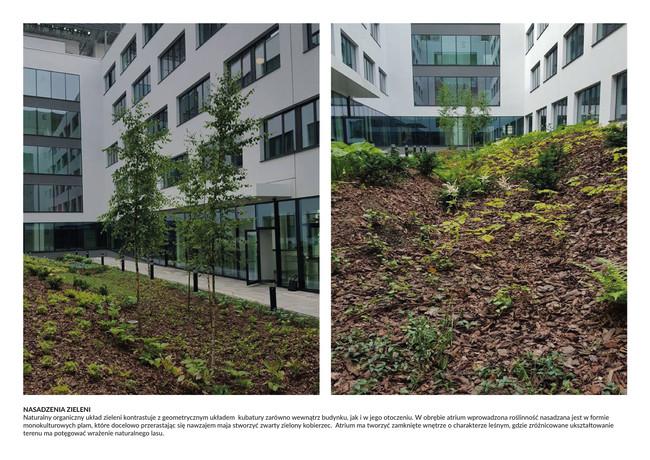 Projekt zagospodarowania terenu biurowcaAvia w Krakowie