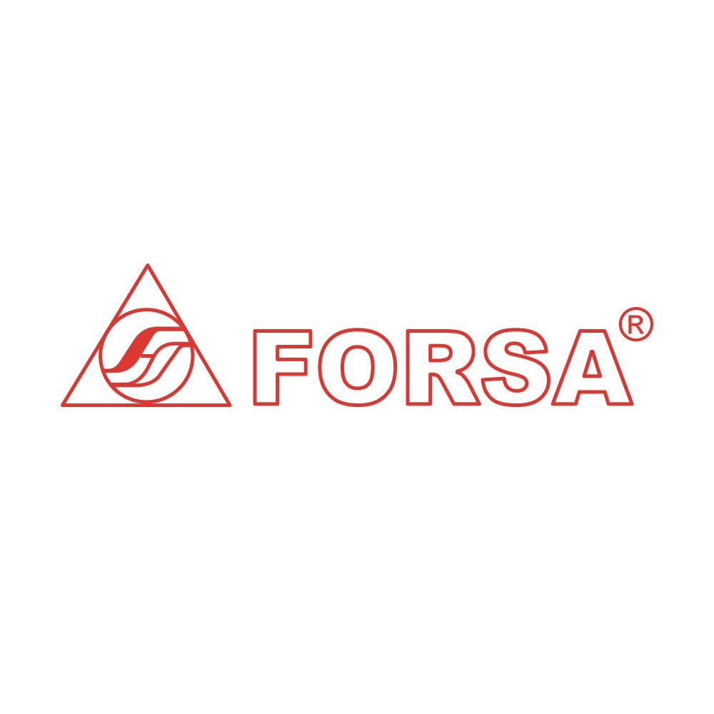 logo FORSA.jpg