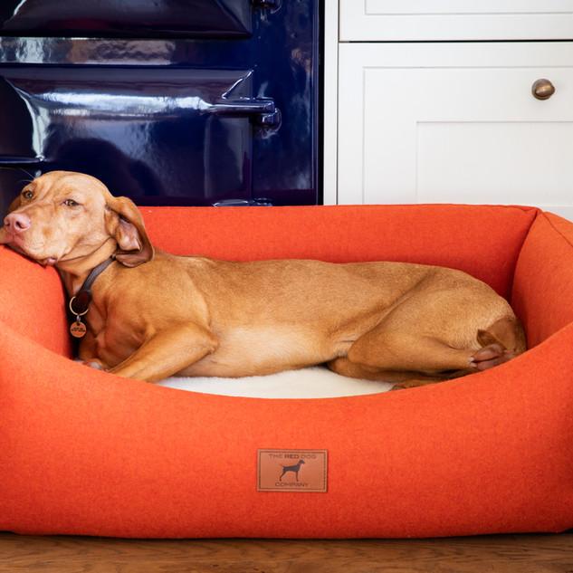 Fire Orange Bed