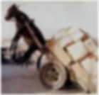 Donkeycart.PNG