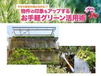 【不動産コラム】今年の雑草対策は攻める!?物件の印象もアップするお手軽グリーン活用術