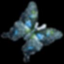 Aquarell-Schmetterling 15