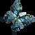 Acuarela de la mariposa 15