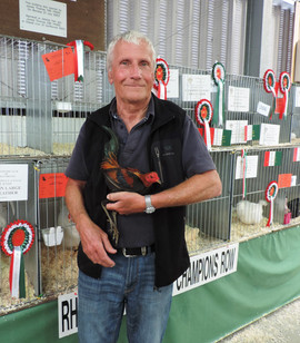 Hugh Price with his Best Hard Feather Bantam, a Black Red Modern Game Cockerel.