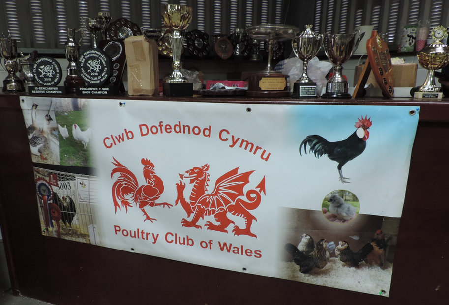 Some of the trophies up for grabs