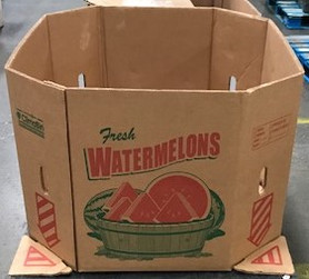 watermelon - Copy (2).jpg