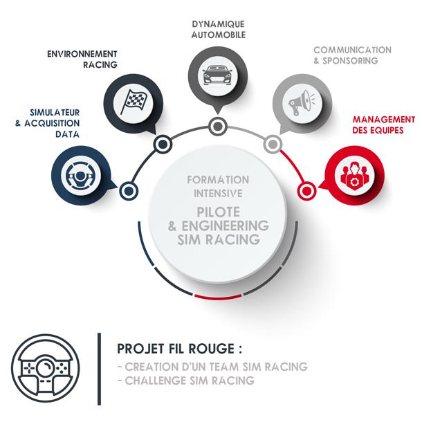 SIM-RACING-ENGINEERING-PICTO.png
